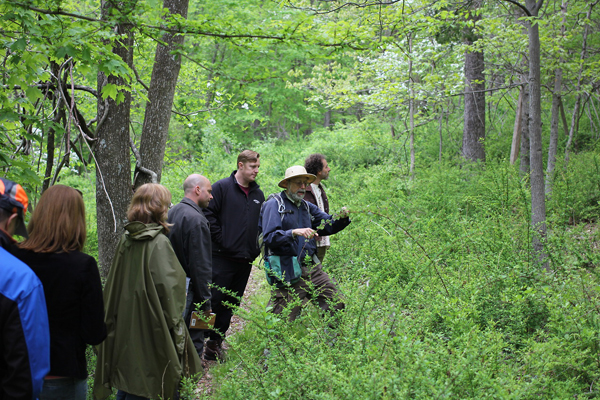 Foraging with Steve Brill